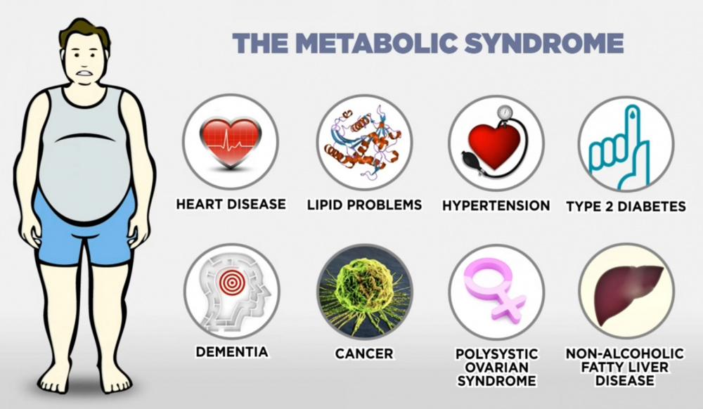 malattie metaboliche livorno dietista bianca bertagni